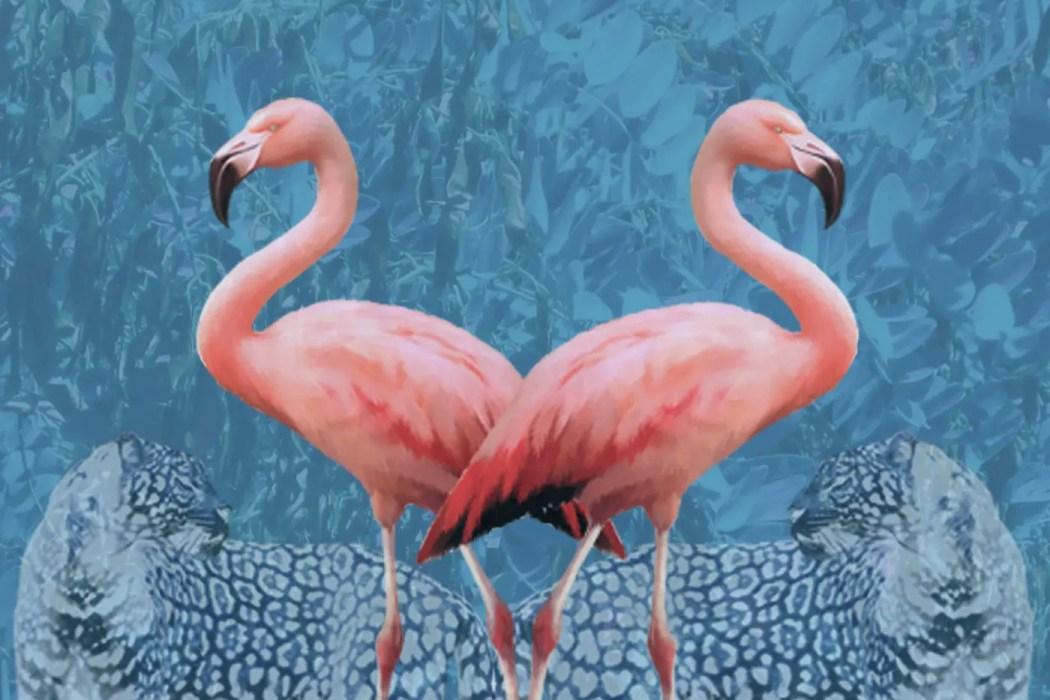 Flamingo Paradiso Pt. 1 - Vox Eagle