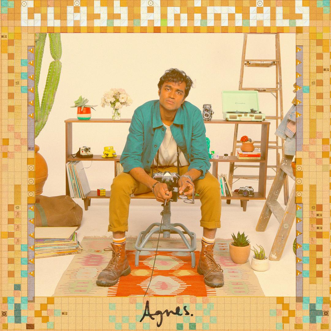 Album art for Agnes by Glass Animals