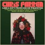 Like a Gift from God or Whatever - Chris Farren