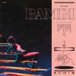 BAMBI album art - Hippo Campus