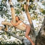Cusco - Allie Crow Buckley