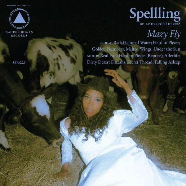 Mazy Fly - SPELLLING