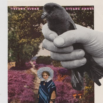 Cicada Songs - Trevor Sloan