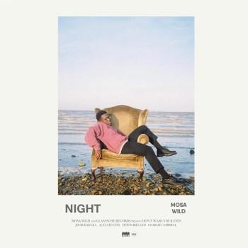 Night - Mosa Wild