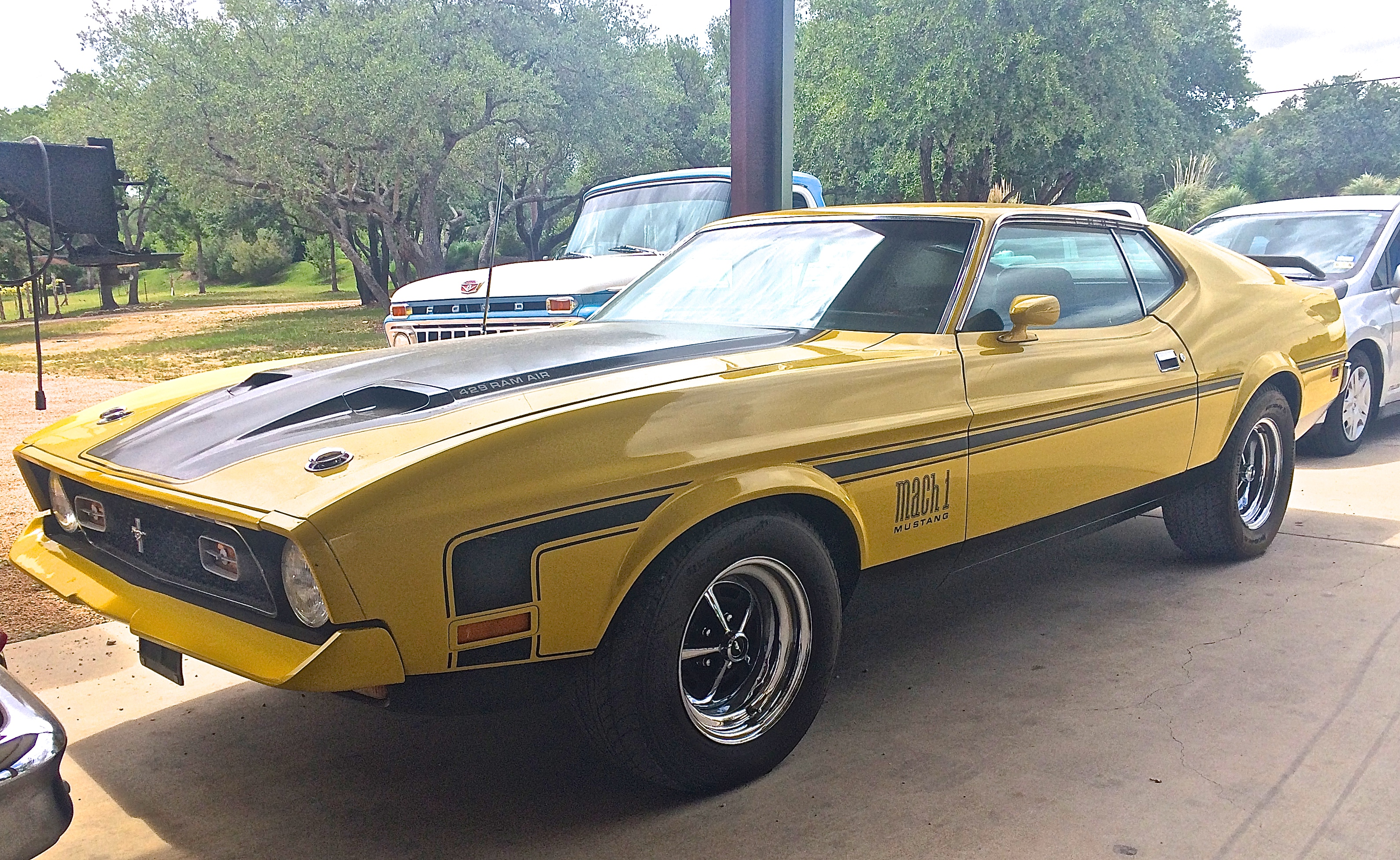 Cars For Sale Austin Tx >> 1971 Ford Mustang Mach 1 429 Ram Air for Sale | ATX Car Pictures | Real Pics from Austin TX ...