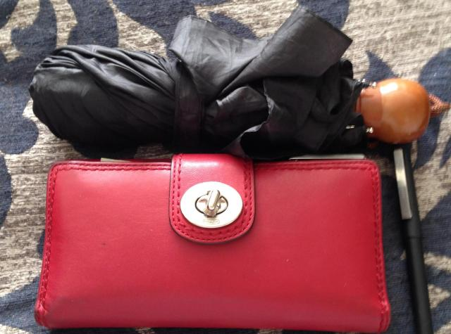 Longchamp umbrella and wallet