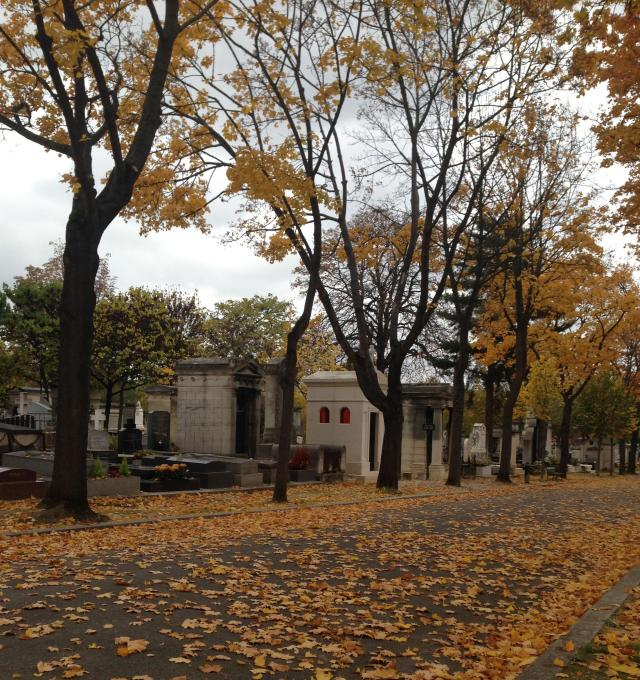 Paris. Montparnasse cemetary. Another view of the falling leaves against the stiffs