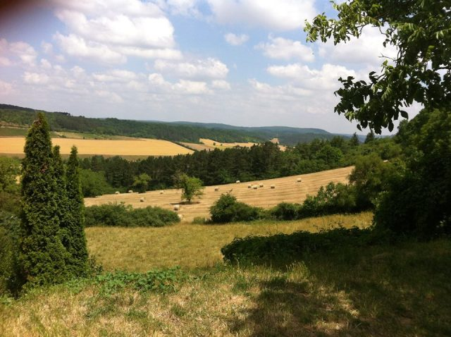 countryside view from Vezelay
