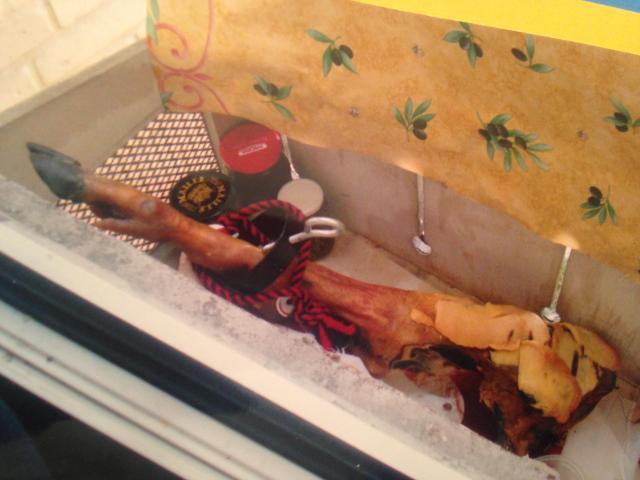 Danieles smoked ham 2