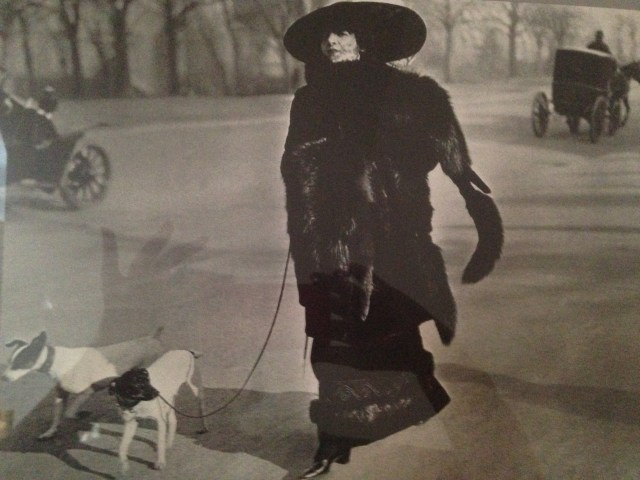 come-on-jhl-lady-with-the-dog-in-paris