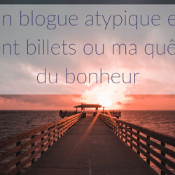 Un blogue atypique en cent…