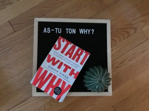 Critique du best seller de Simon Sinek