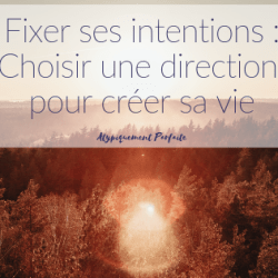 Fixer ses intentions : Choisir…