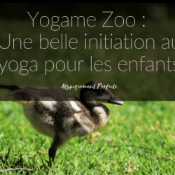Yogame Zoo : Une belle…