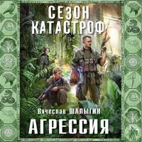 Аудиокнига Агрессия Вячеслав Шалыгин