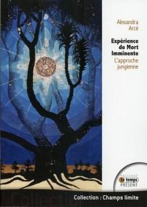 E.M.I. - L'approche jungienne
