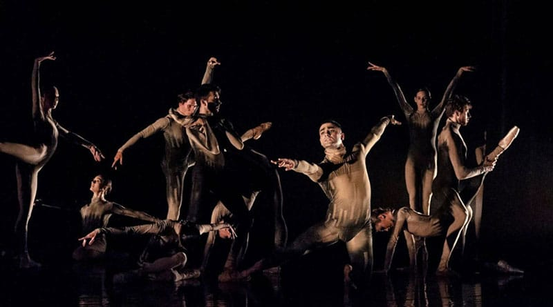 The Israel Ballet is Looking for Male Dancers