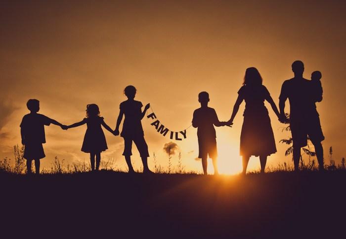 1, 2, 3, nous allons… voir la famille!