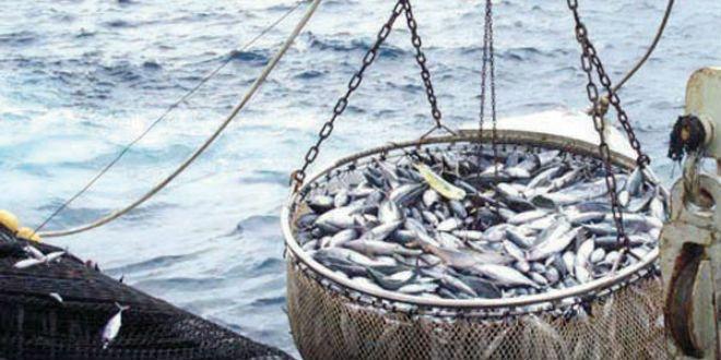 Pêche: hausse de la valeur des produits commercialisés à fin août