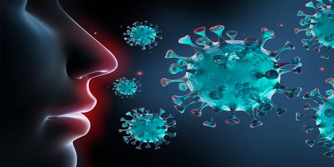 Coronavirus: l'OMS rassure