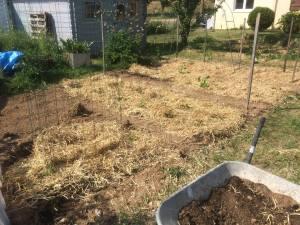 Que semer et planter en décembre au potager et en permaculture