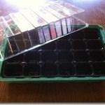 faire des semis en alvéoles
