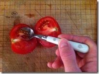 récupération de graines de tomates 2
