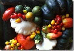 dlicieuse-rcoltes-de-fruits-et-lgumes1.jpg