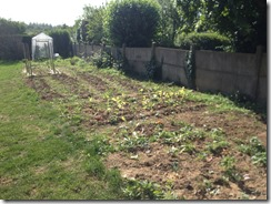 potager globale