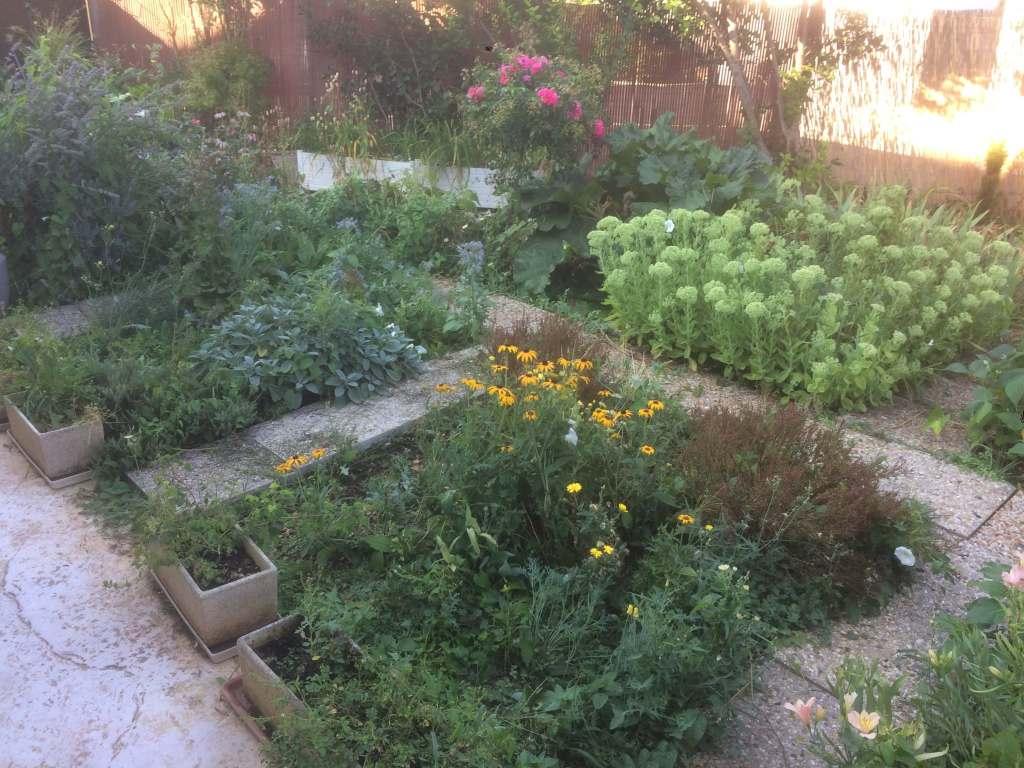 un exemple de jardin diversifié et équilibré
