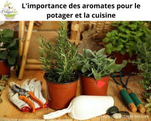 Aromates pour le potager