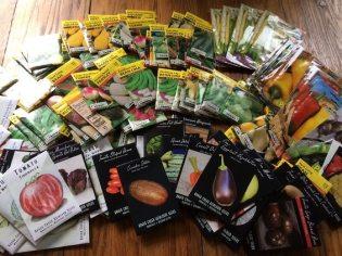Seeds 565