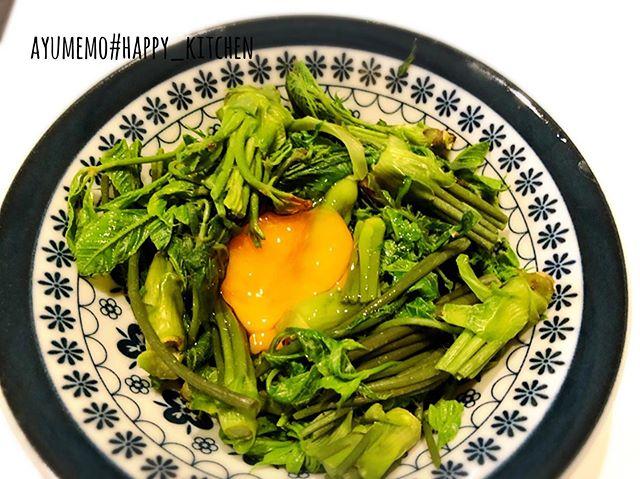 春の山菜料理第3弾は、定番のこしあぶらのお浸しの、卵黄のせ♬♬ せっかくの卵黄潰れましたww醤油を垂らして、これがまた美味し~んだ!! こしあぶらの風味大好き#こしあぶら #こしあぶらのお浸し #山菜
