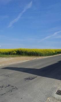 Charente Maritime (6)