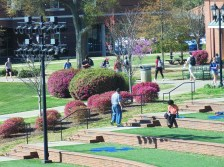 Some people are walking around campus, while others are enjoying the weather at the D. Douglas Barnard, Jr. Amphitheatre. (Photo: Jamie Sapp)