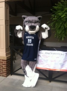 Mascot Augustus shows off his muscles at the Augusta University Scholarship Brunch on April 30. (Photo: Shellie Smitley)