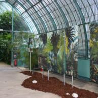 Michelle-Auboiron-expositions-Serres-d-Auteuil-Paris-2004--11 thumbnail