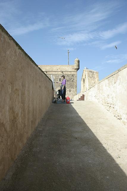 michelle-auboiron-peintre-en-action-sud-marocain--30