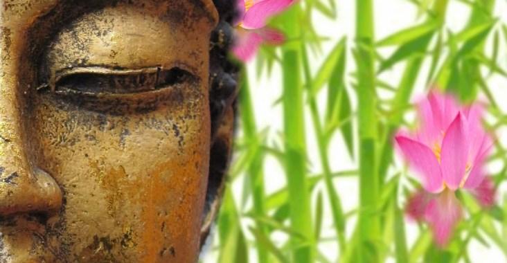bouddha spiritualité dalai lama livre philosophie