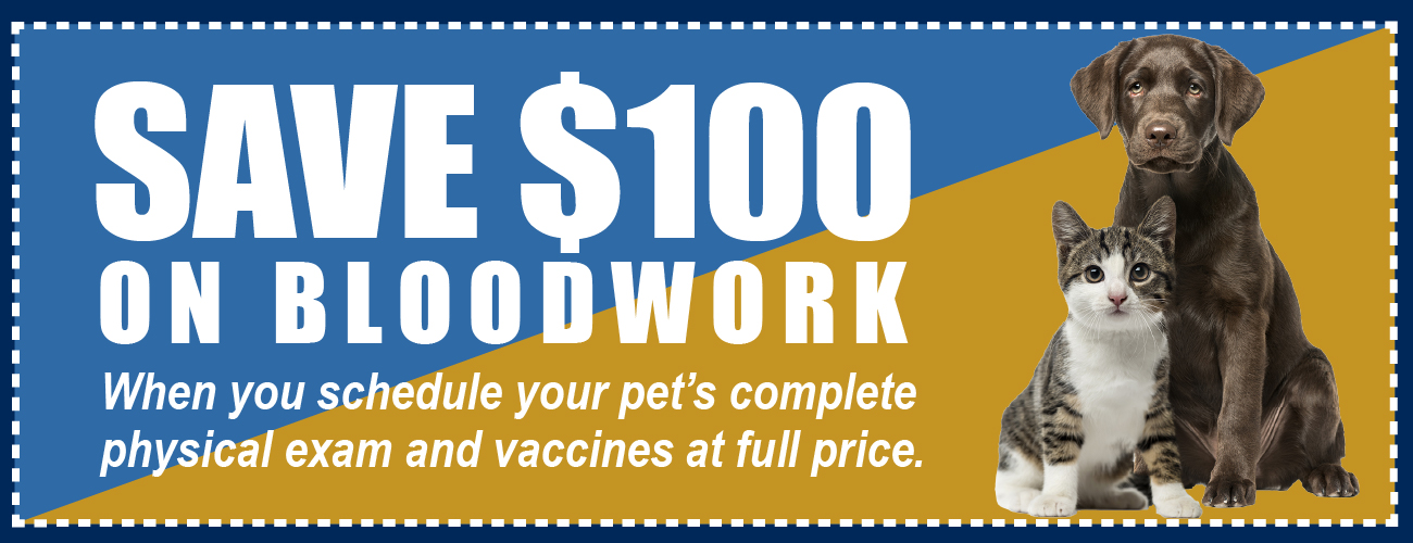 Get discounts on bloodwork and wellness check when you use the coupon code