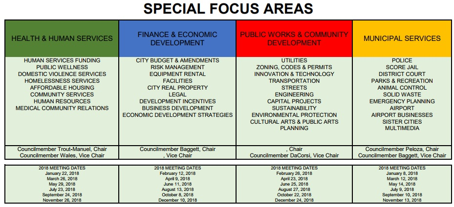special focus areas, council focus area assignments