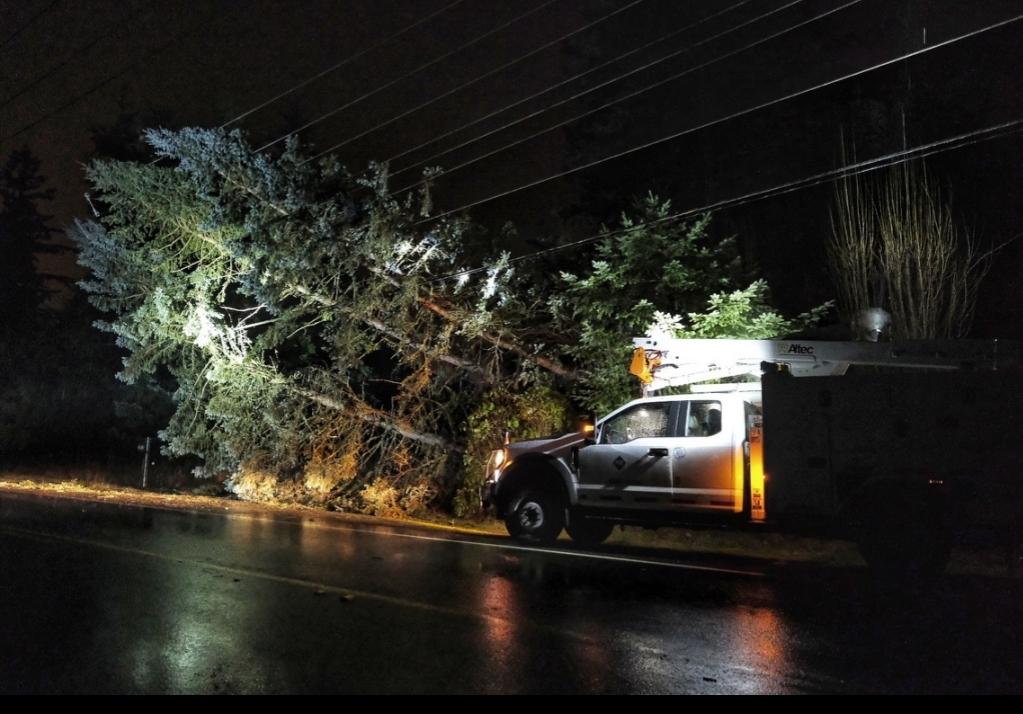 Pse, puget sound energy, power lines down, storm damage