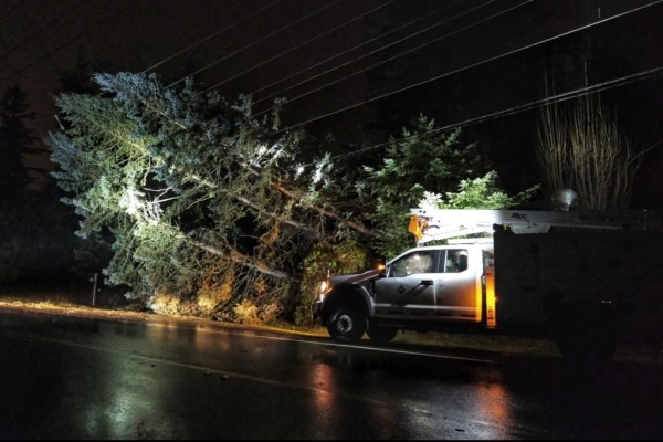 Pse, puget sound energy, power lines down, storm damage