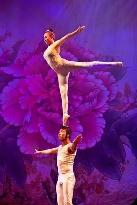 Golden Dragon Acrobats, BRAVO Performing Arts Series, Acrobat Show, Stunning acrobatics, Golden Dragon, balancing on head