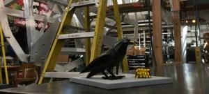 Peter Reiquam, Crow with Fries, City of Auburn, Auburn Wa, Auburn