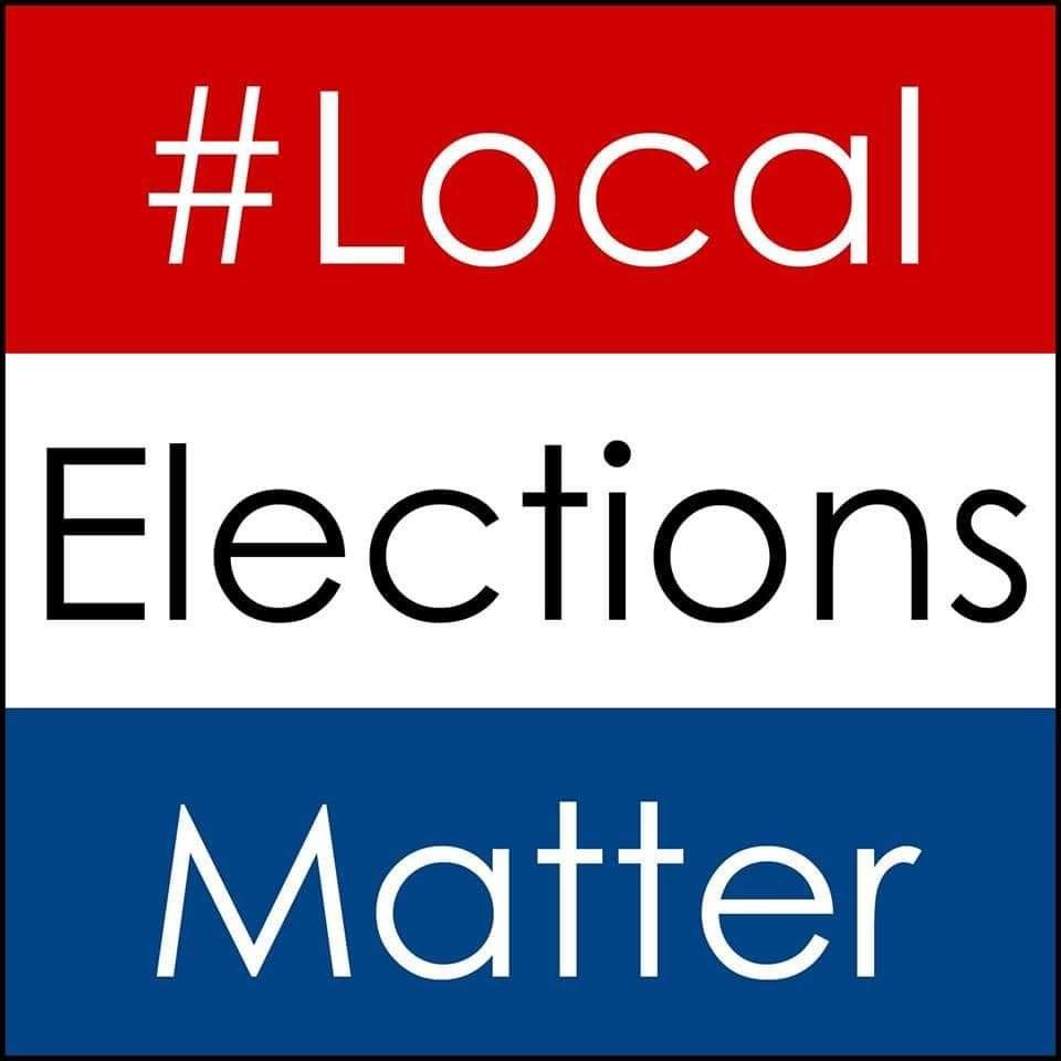 auburn city council, local elections matter, vote 2019