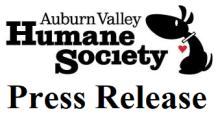 avhs, auburn valley humane society, avhs auburn wa, auburn wa humane society