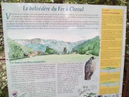 BelvedereFerCheval2