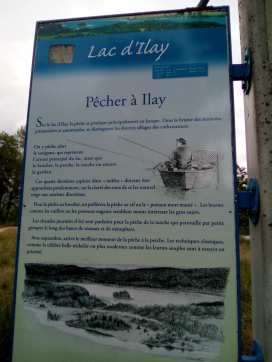 LacIlay5