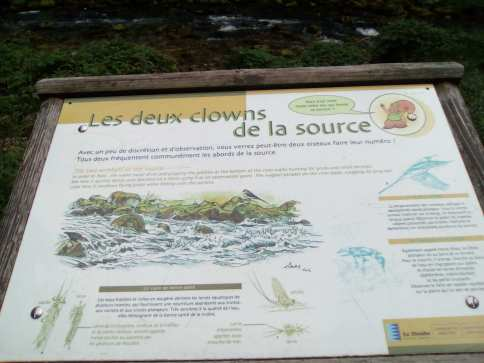 Source_Doubs_Mouthe